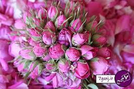 فوائد استفاده از گل و گلاب
