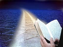 معیار رتبه در قیامت